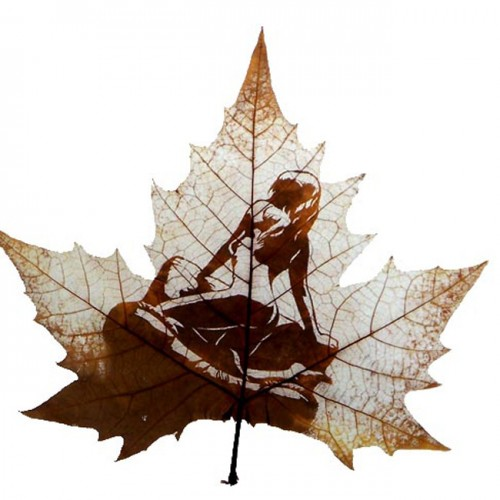 Amazing Leaf Art
