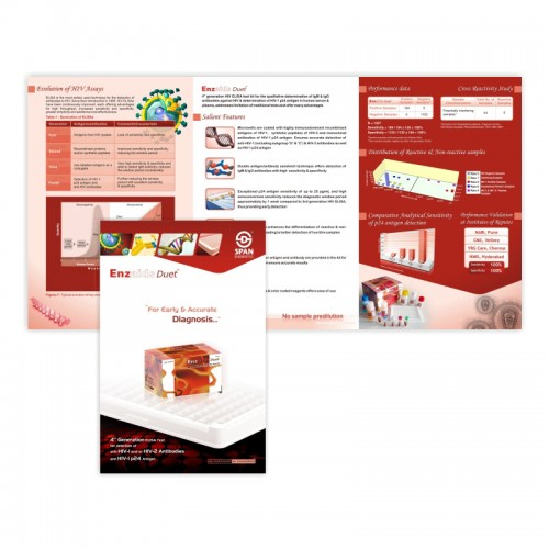 Brochure Design by keypxl