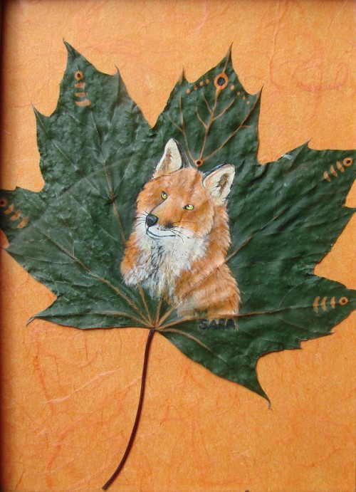 Red Maple Fox