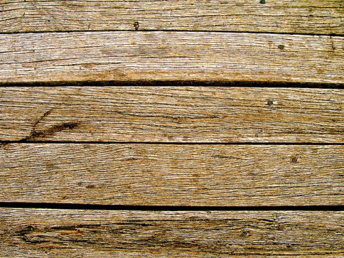Wood Texture by Douglas Heriot