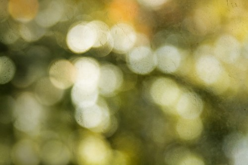 bokeh texture for your use