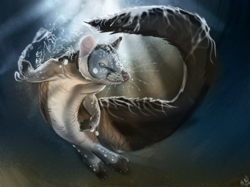 Quoll LungFish Mashup for RoseQuoll
