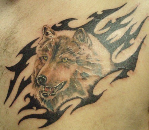 Wolf and Tribal